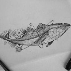 фото, эскиз кит