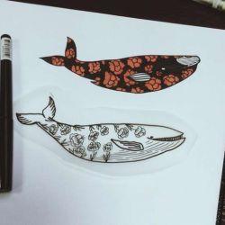 кит эскиз