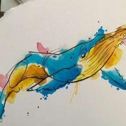 кит фото, эскиз