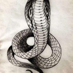 тату кобра эскиз
