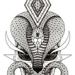 фото, эскиз тату кобра