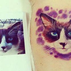 фотография татуировка кошка