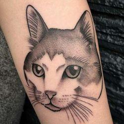 Татуировка кошка фотография