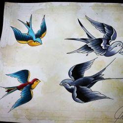 эскиз татуировка ласточка