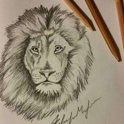 эскиз тату лев