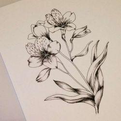 татуировка лилия фото, эскиз