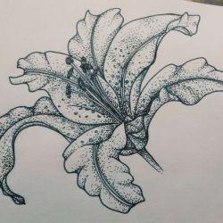 фото, эскиз татуировка лилия