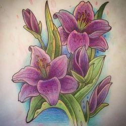 эскиз лилия