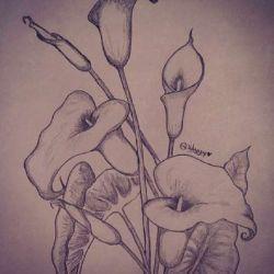 фото, эскиз лилия