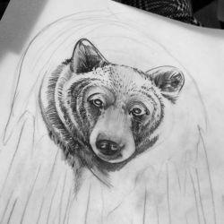 фото, эскиз тату медведь