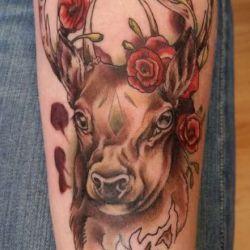 фотография татуировка олень