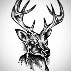 эскиз татуировка олень