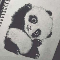 тату панда эскиз