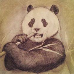 эскиз татуировка панда