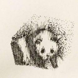 эскиз панда