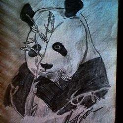 фото, эскиз тату панда