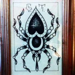 фото, эскиз татуировка паук
