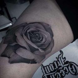 фотография тату роза