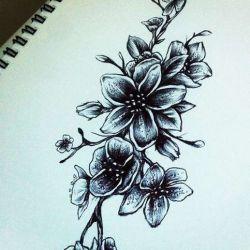 татуировка сакура эскиз