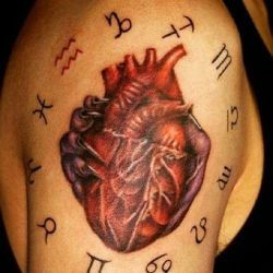 фото сердце
