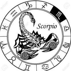 скорпион эскиз