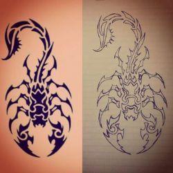 скорпион фото, эскиз
