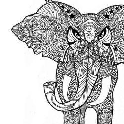 слон фото, эскиз