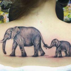 Тату слон фото