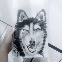 Татуировка собака фото, эскиз