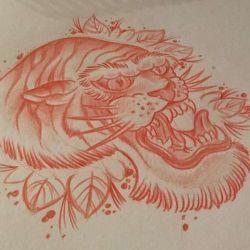тигр эскиз