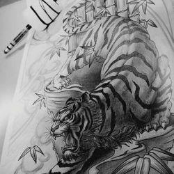 тигр фото, эскиз