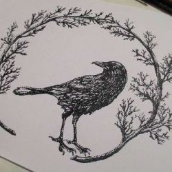 эскиз татуировка ворон