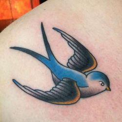 Приносит ли удачу татуировка ласточка? Что она обозначает, примеры фото, эскизы