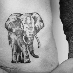 Татуировка слон: значение этого животного в разных культурах, а также эскизы и фото татуировок
