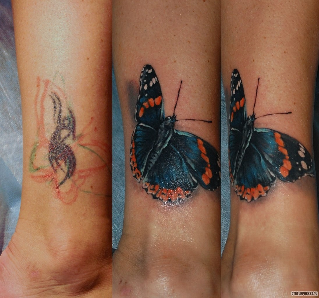 Фото татуировок с бабочками