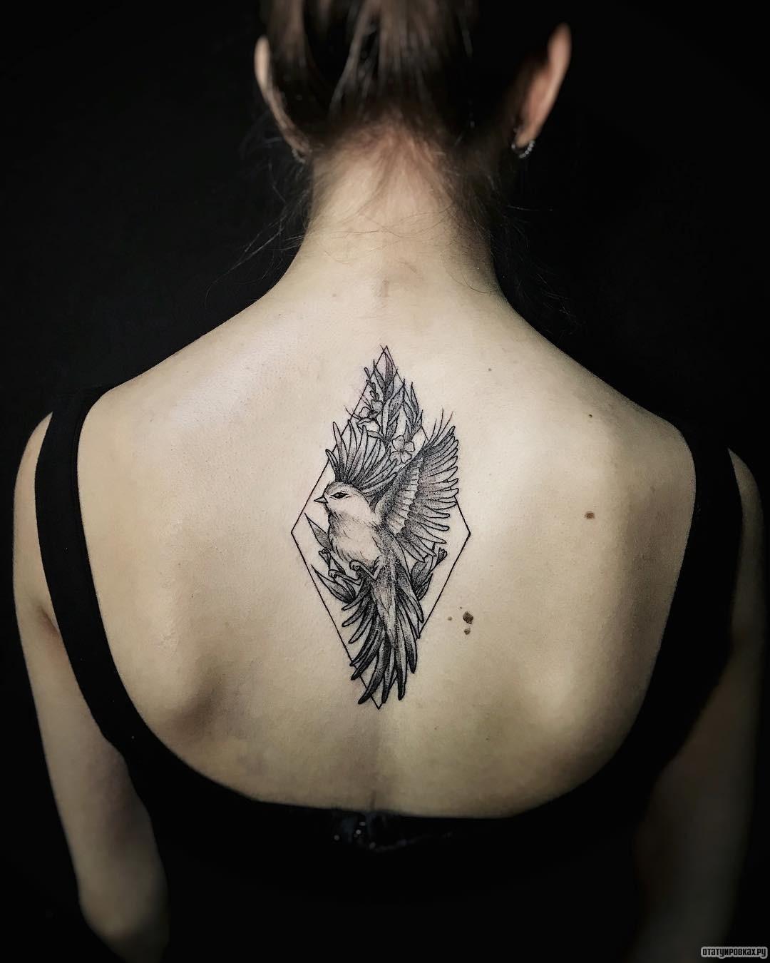 Татуировки на спине птицы фото