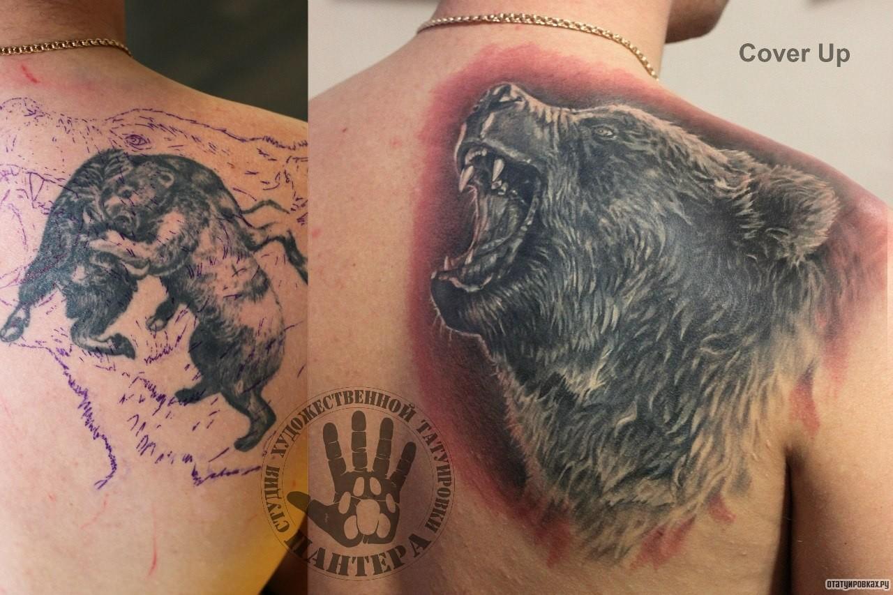 Татуировки медведя фото и цены