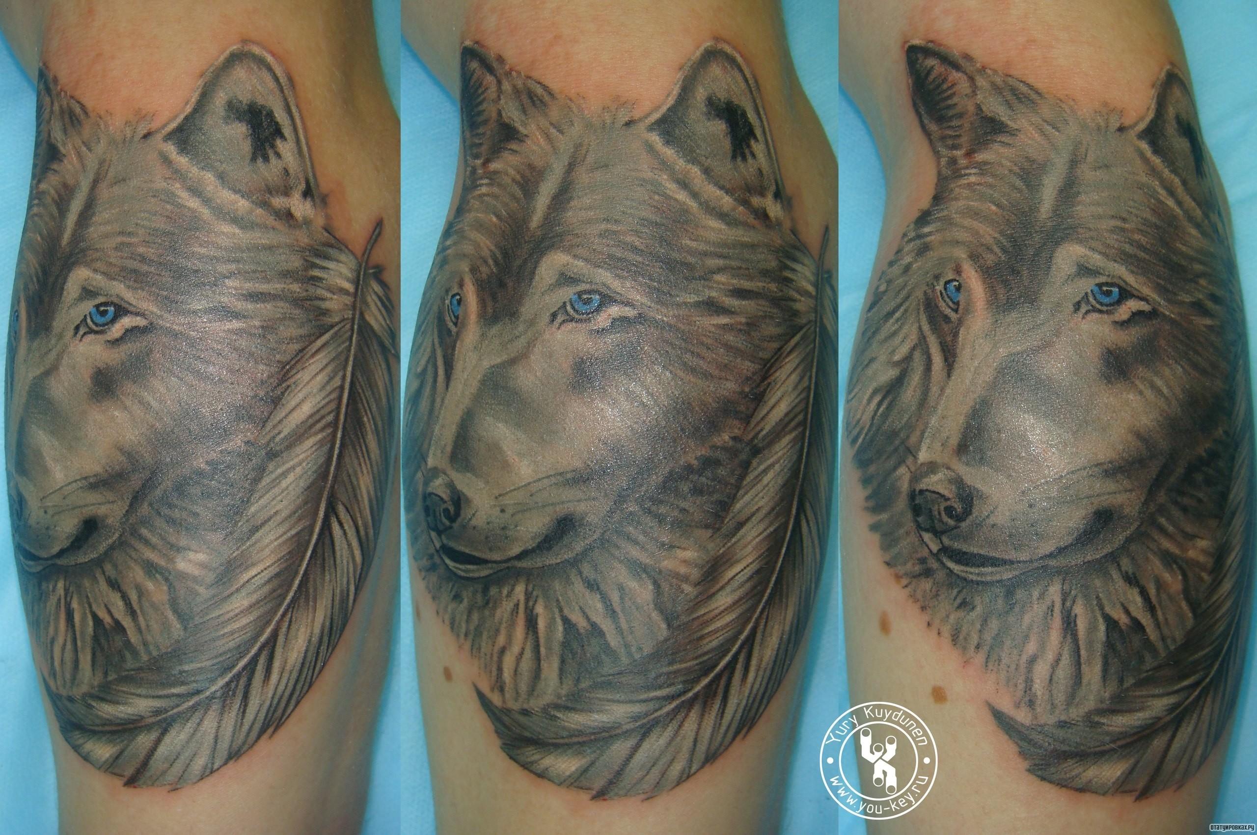 Татуировки с волками фото