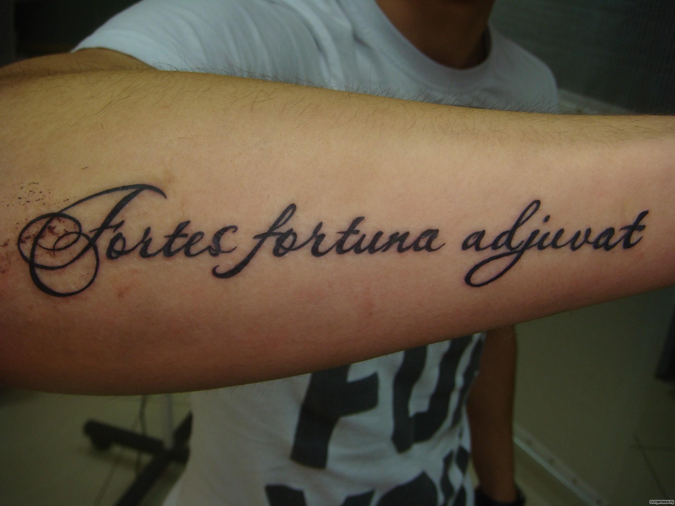 Фортуна помогает смелым на латыни тату фото