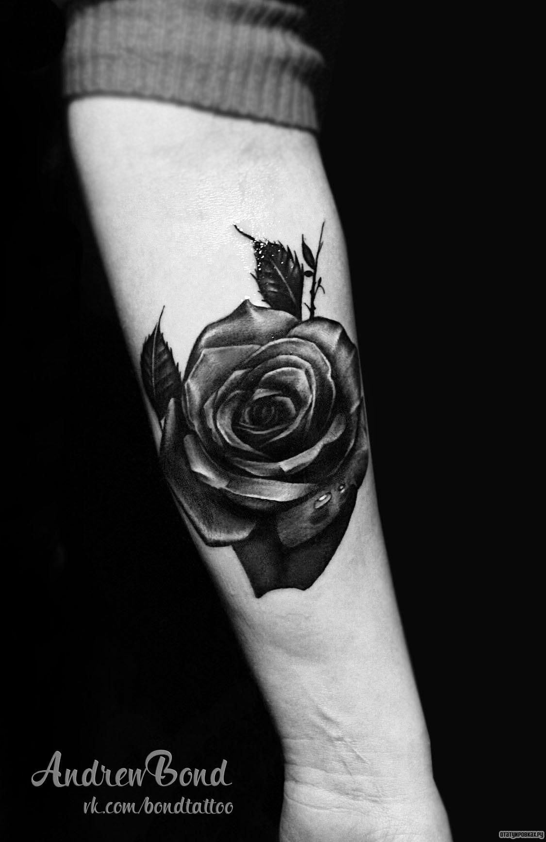Фото тату роза предплечье