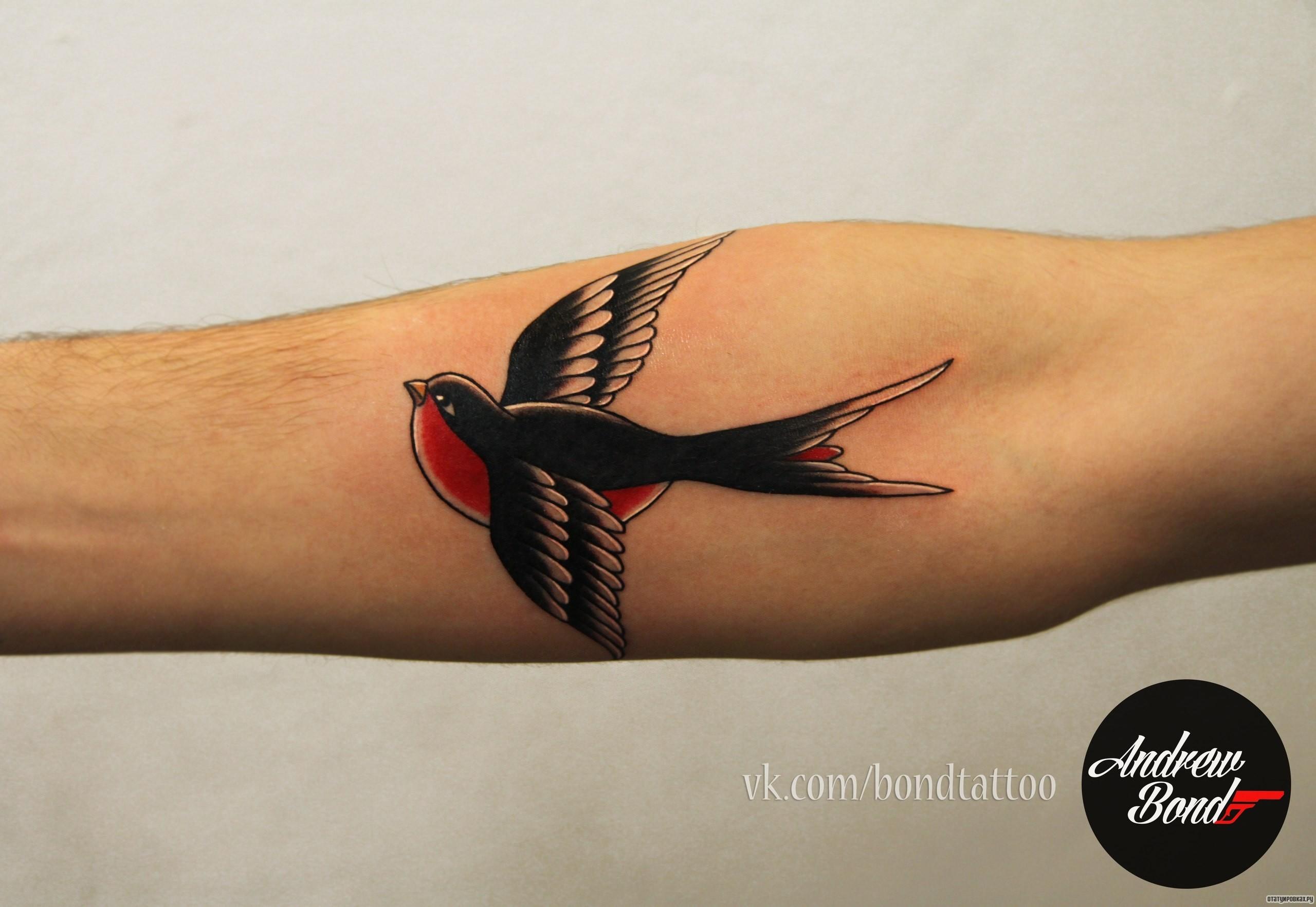 Татуировка ласточка - значение, эскизы тату и фото