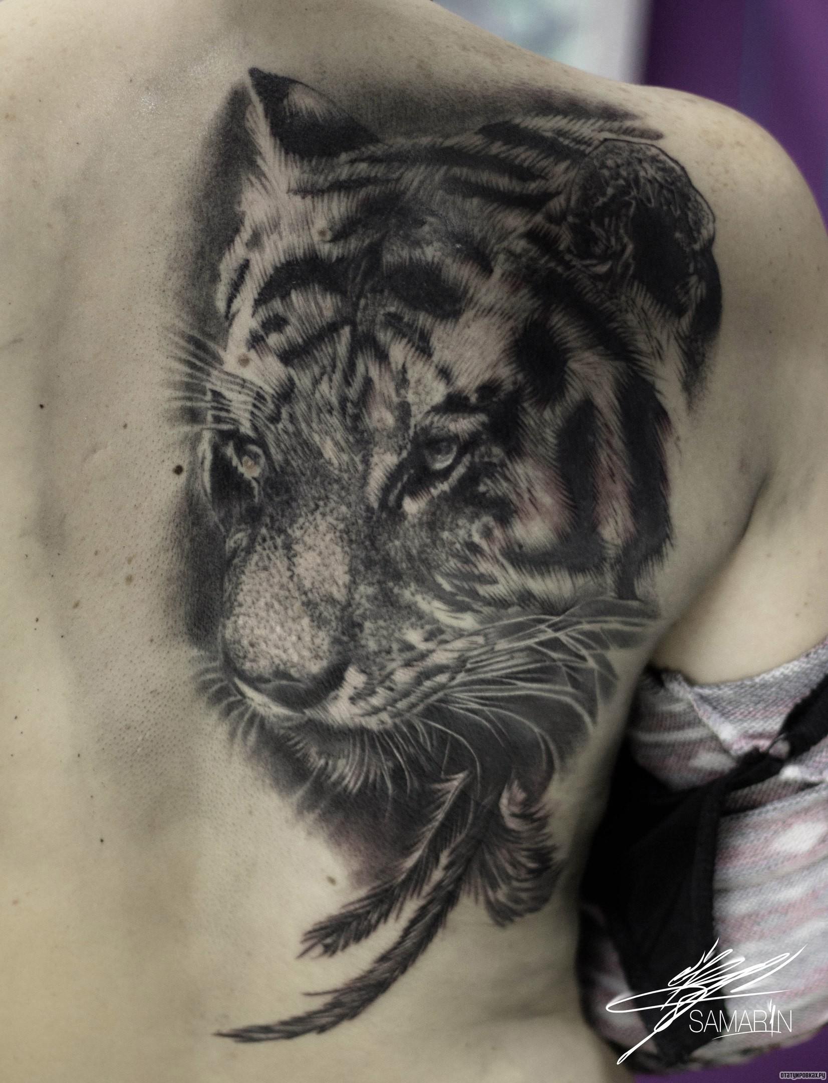 Фото татуировок тигр на всю спину