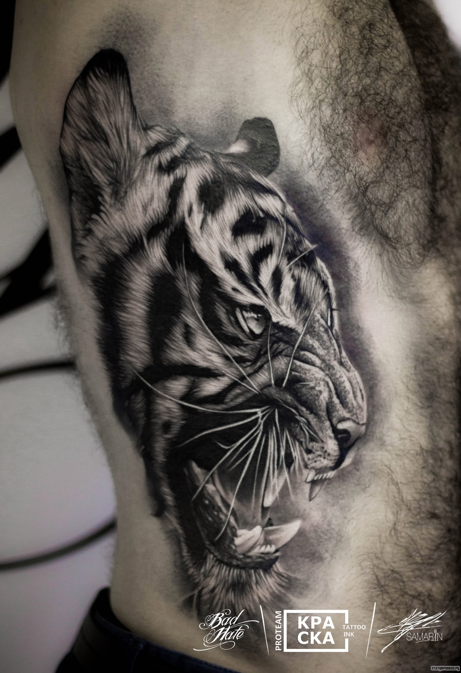 Татуировки тигра фото эскизы